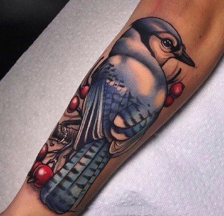 彩色newschool的一组漂亮包臂动物纹身图案