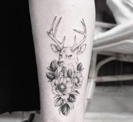 一组素描花纹身图案欣赏