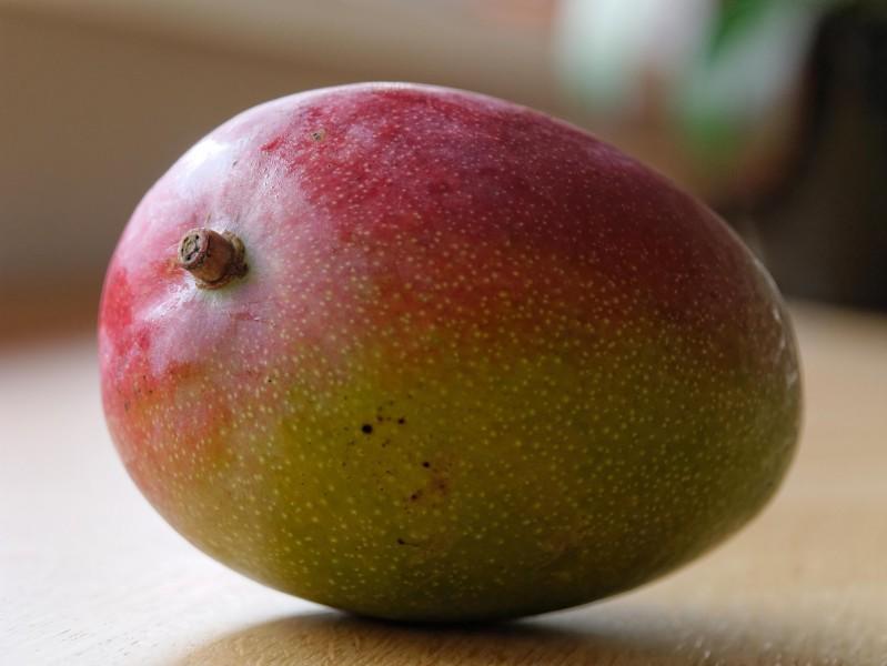 新鲜芒果摄影图片(21张)