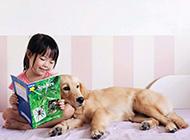 萌宝宝与宠物之间温馨时刻唯美图片