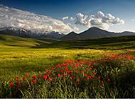 宁静惬意的自然风景壁纸