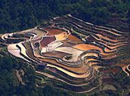 贵州乡村景观梯田风景图片