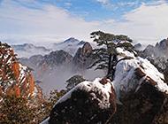 冬季雪盖黄山美景