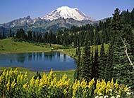 绿意盎然的山水风光美景