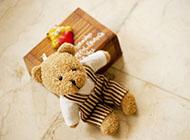 可爱精致的玩偶小熊图片