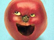 大笑的水果表情图片