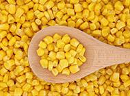 香甜诱人的玉米粒图片