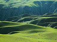 新疆阔克苏大峡谷自然风光组图