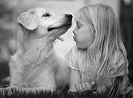 可爱动物搞笑图片之甜蜜的吻