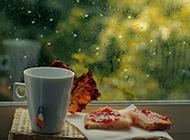 唯美的下雨高清风景图片壁纸