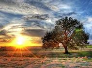 草原日出风景高清壁纸
