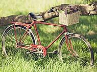 唯美小清新自行车户外意境图片