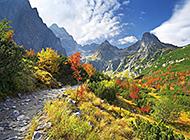 青葱绿山山色自然风景图片合集
