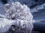 四季唯美湖泊倒影风景图片壁纸
