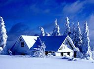 绝美纯白的雪景风光壁纸欣赏