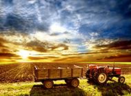 美丽的田野土地意境唯美图片