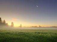 浓雾早晨精美电脑壁纸