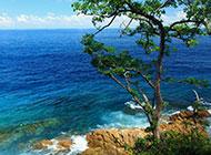夏天海岛风景图片旖旎清新