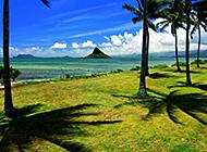 迷人的夏威夷海滩组图