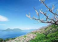 捕捉北海道美丽梦幻风景高清图片