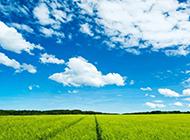 乡村田园风光绿色风景迷人