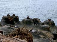 海滩石头风景图片高清壁纸下载