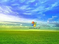 绿色草原风景winXP桌面壁纸分享