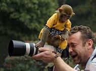 动物爆笑趣图之人类是怎样拍照的