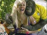 恶搞动物图片之色猩猩
