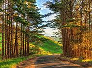唯美公路风景图片风光迷人