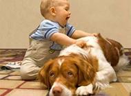 小孩动物搞笑图片