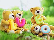 可爱的小熊仔娃娃唯美图片