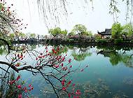 江苏无锡蠡园的春天风景图片