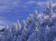 白色雪山寂静风景图拍