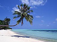 海滨浅滩美景海水清澈淡蓝