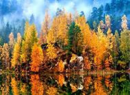 湖泊风景图片惊现唯美倒影