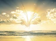 海边日出唯美图片风景怡人