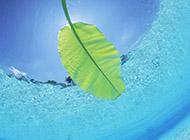 夏天迷人的海面风光高清壁纸