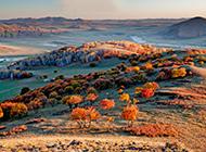 梦中美丽高清自然景色