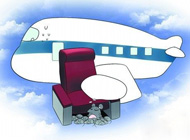 老鼠偷乘飞机 居然在飞机上产下10只幼鼠