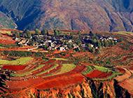 云南东川红土地  秋天的美景图片