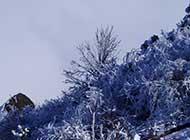 唯美迷人的峨眉山万佛顶雪景高清图片