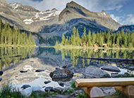 加拿大国家公园最美的风景图片壁纸