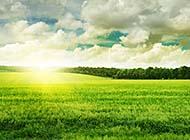 一碧千里的草原风光高清桌面壁纸