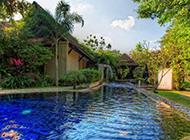 度假村游泳池风景图片特写