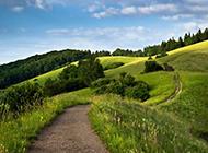唯美幽静小路好看的风景图片壁纸
