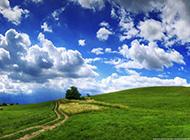 优美的草原风景图片大全