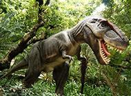 牙齿锋利的霸王恐龙图片