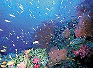 蓝天碧海唯美海滨风景图片