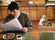 动物吃饭搞笑图片之共进早餐